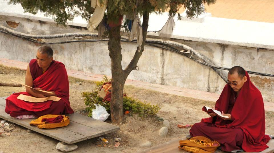 Moines en prière Bodnath Kathmandou Népal