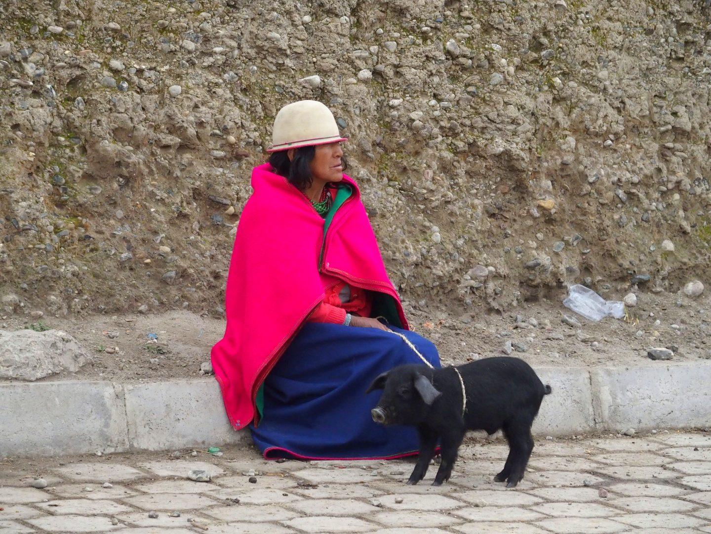 Indigène et porcelet marché de Guamote Equateur