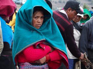 Le marché de Guamote, le plus beau d'Equateur !