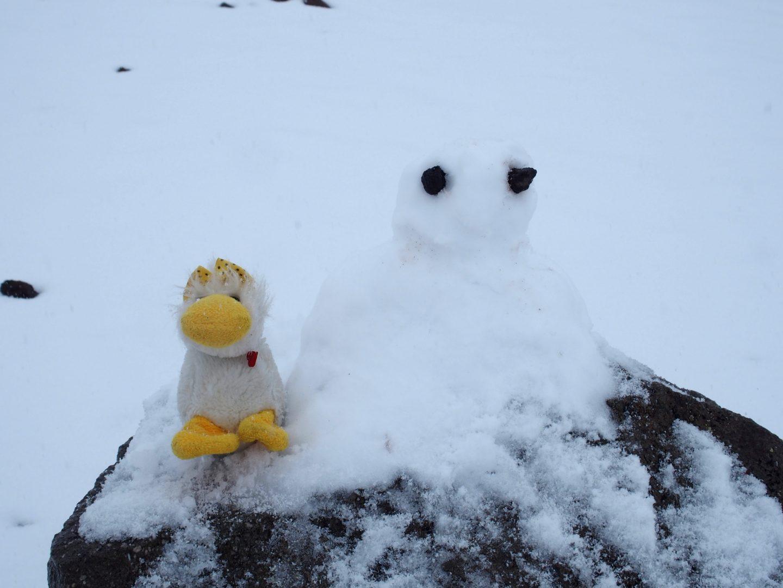 Ma mascotte Couinn Couinn et mon bonhomme de neige sur volcan Chimborazo Equateur