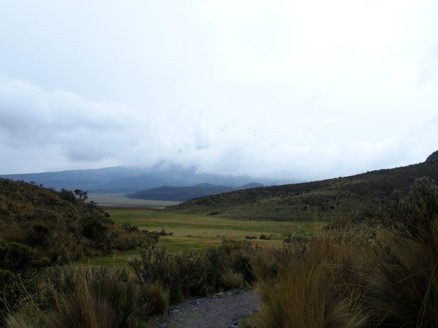 Paysage pampa pied volcan Cotopaxi Equateur