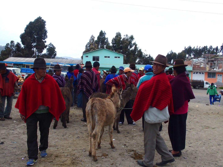 Vendeurs d'ânes sur marché de Guamote Equateur