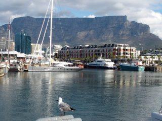 Carnet de voyage en Afrique du sud