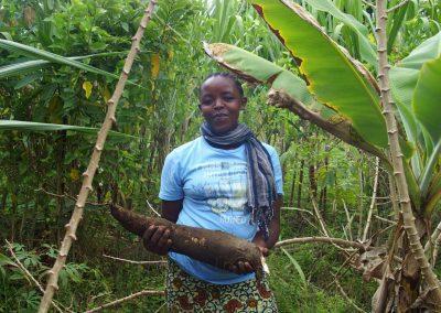 Culture du manioc Tanzanie