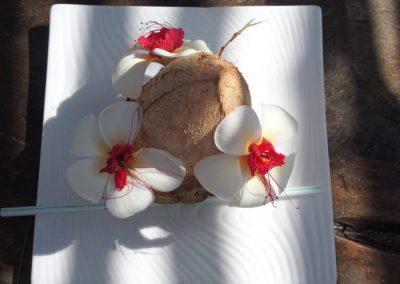 Eau de coco Season's lodge Pongwe - Zanzibar