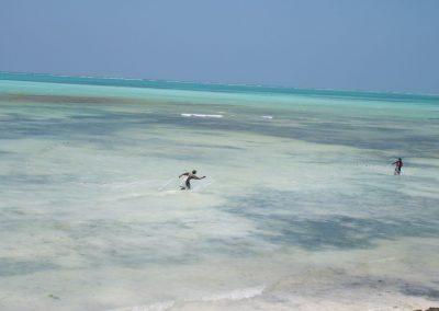 Pose de filets - Zanzibar