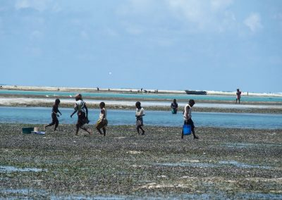 Ramasseuses coquillages - Mozambique
