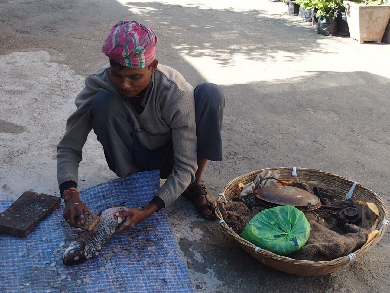 Ecaillage du poisson Kalimpong Inde
