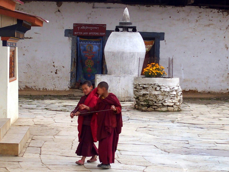 Jeunes moines Gangtey Bhoutan