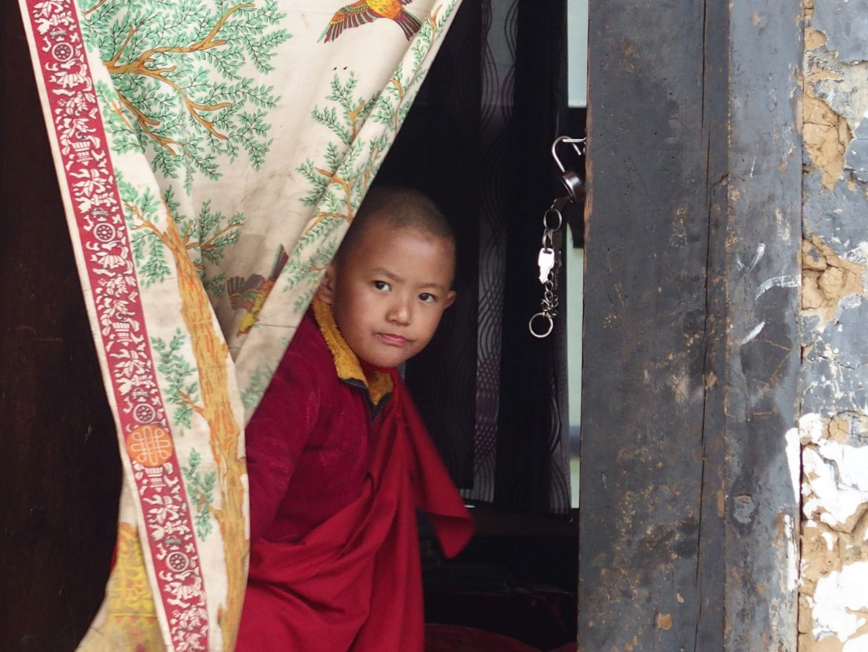 Moine curieux Bhoutan