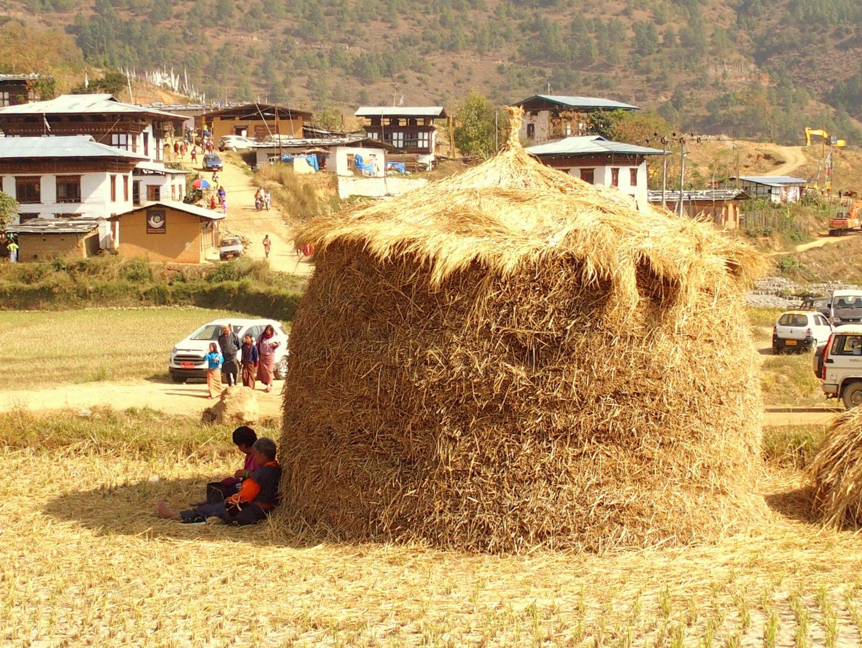 Village vallée Punakha 11 jours au Bhoutan