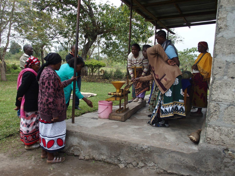 pression noix jatropha Tanzanie