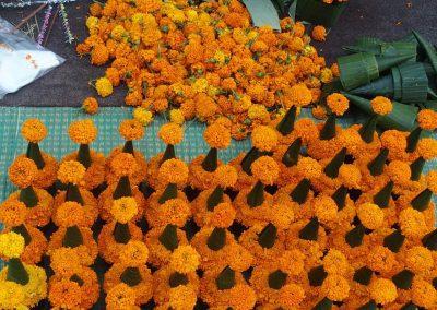 Fleurs sur les marchés du Laos