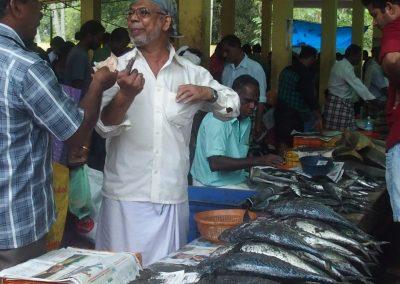 Marché aux poissons Varkala Inde