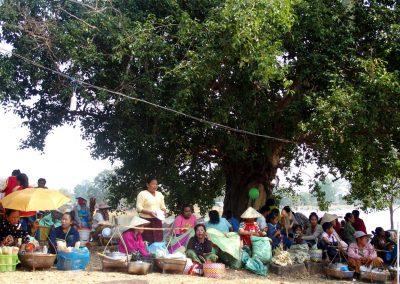 Marché sous les arbres sud-Laos