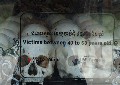 Cranes de victimes Pol Pot Phnom Penh Cambodge