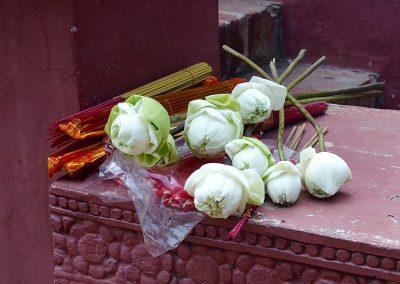 Fleurs devant temple Cambodge