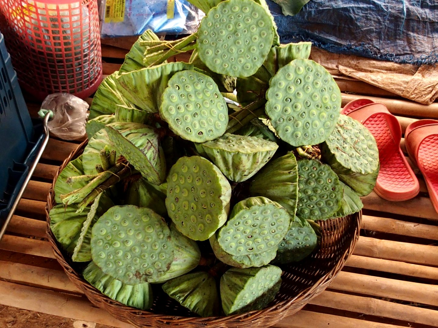 Fruits du lotus marché lac Tonle Sap Cambodge