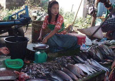 Jeune marchande poissons Birmanie