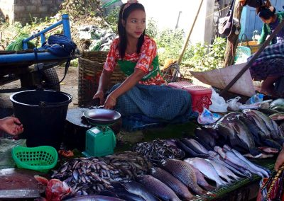 Jolie vendeuse poissons marché Birmanie