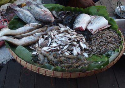 Panier de poissons marché Birmanie