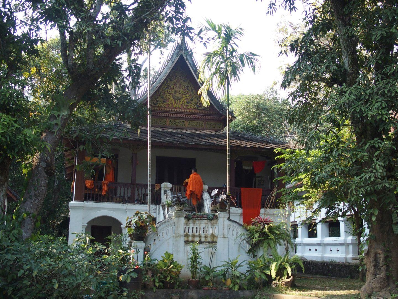 Temple caché et jeunes moines laotiens