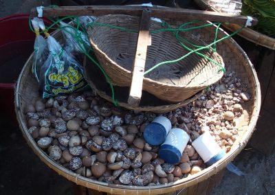 Vente de noix marché Birmanie