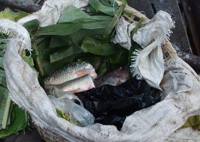 Vente poissons marché Birmanie