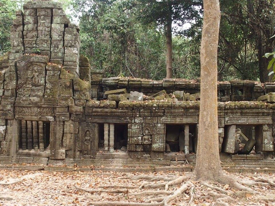 Vestiges temples Angkor Ta Prohm Cambodge