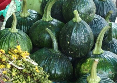 Courgettes Cambodge