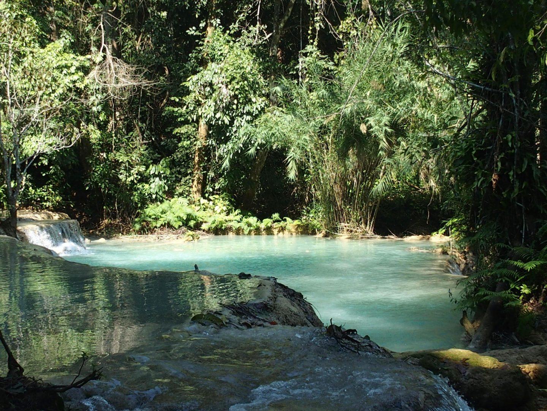 Piscine naturelle Waterfalls Kuang Si Luang Prabang Laos
