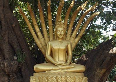 Protection du bouddha Laos
