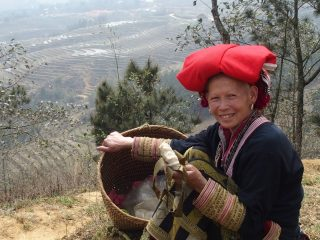 Ma rencontre avec les Daos à Sapa au Vietnam