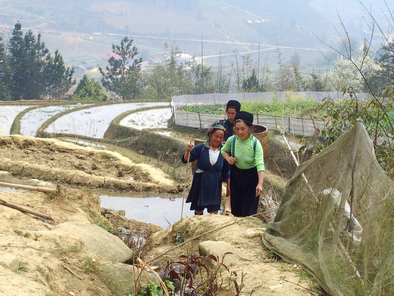 Famille Hmông Ta Phin Vietnam