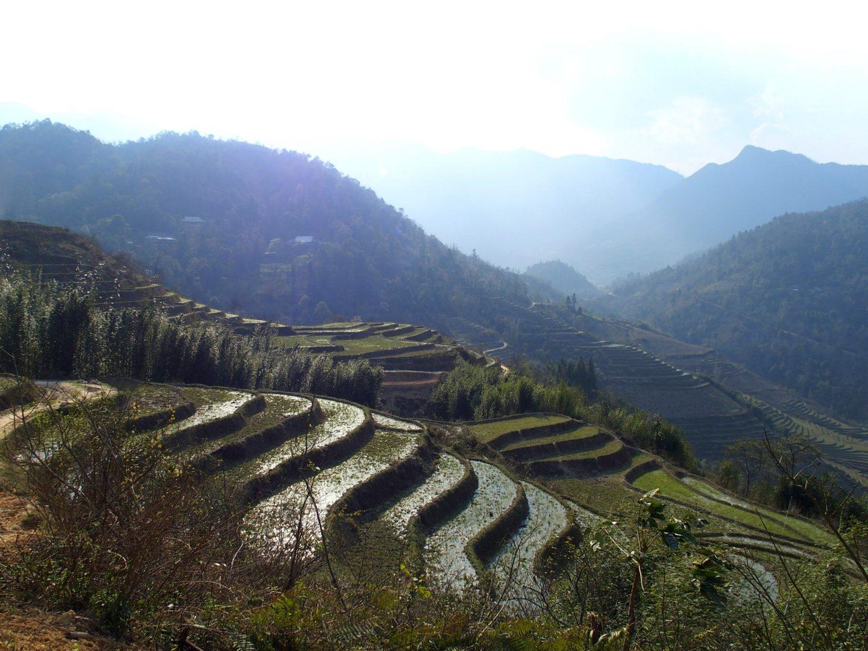 Paysage de rizières en mars Ta Phin Vietnam