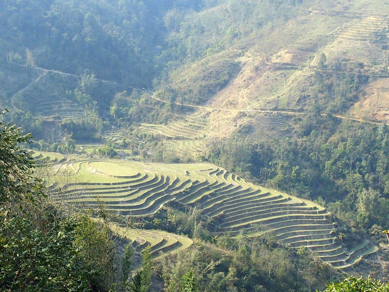 Rizières en terrasses circulaires Ta Phin Vietnam