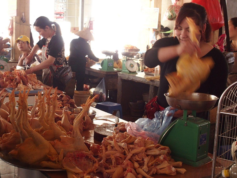 Vente poulets marché Sapa Vietnam