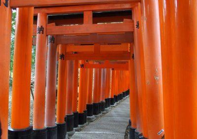 Entrée Tori Japon
