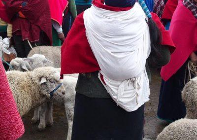 Vendeuses de moutons