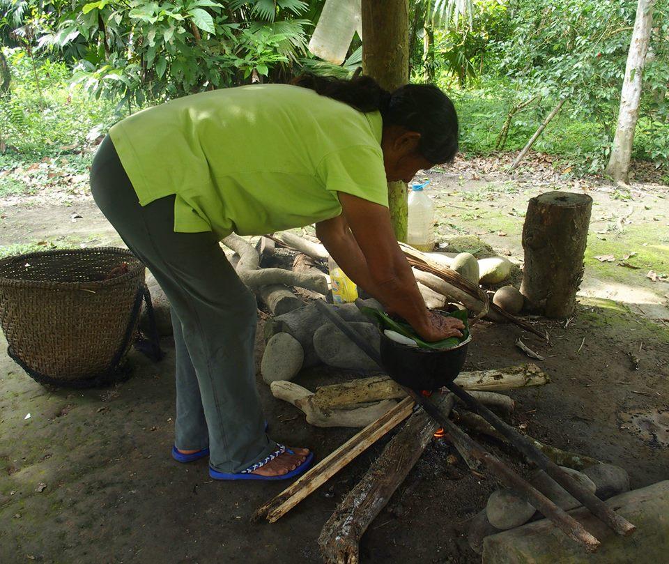 Cuisson du manioc sous feuilles de bananier Amazonie Equateur