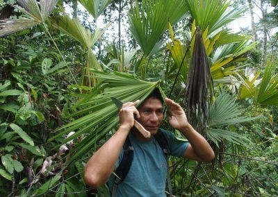 Comment se protéger de la pluie dans la jungle...