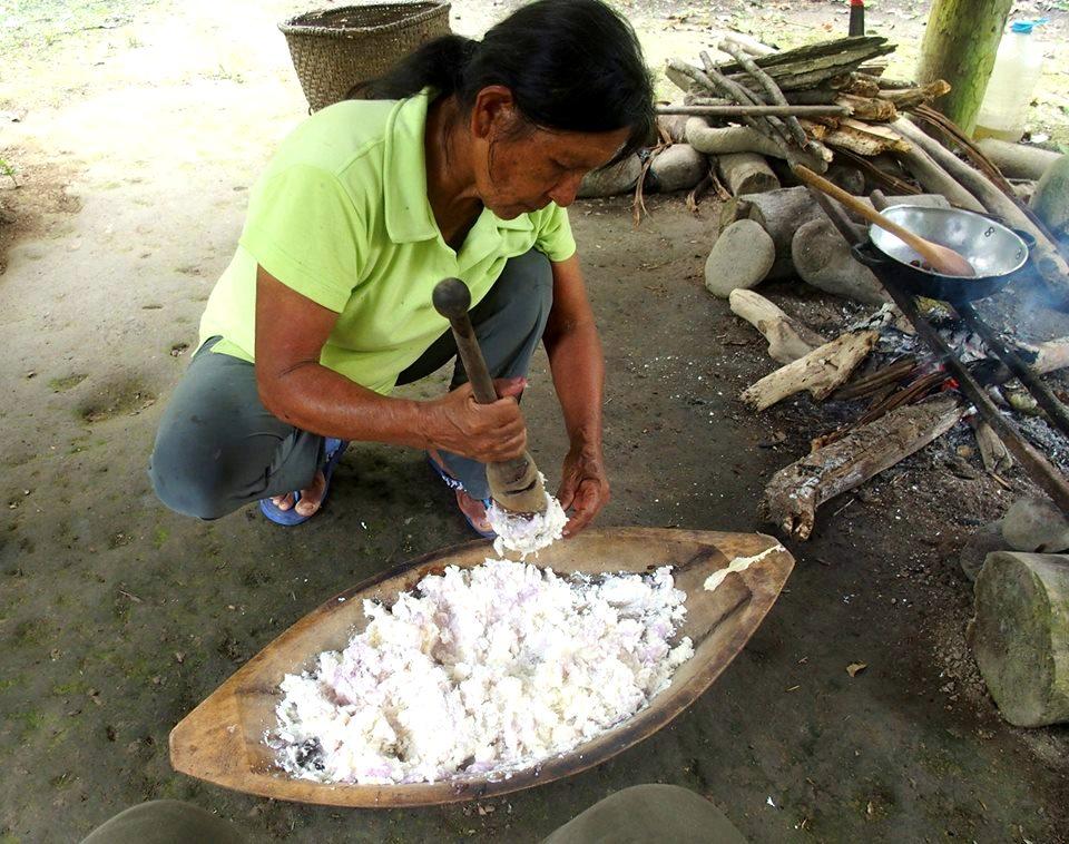 Préparation de chicha de yuca en Amazonie équatorienne
