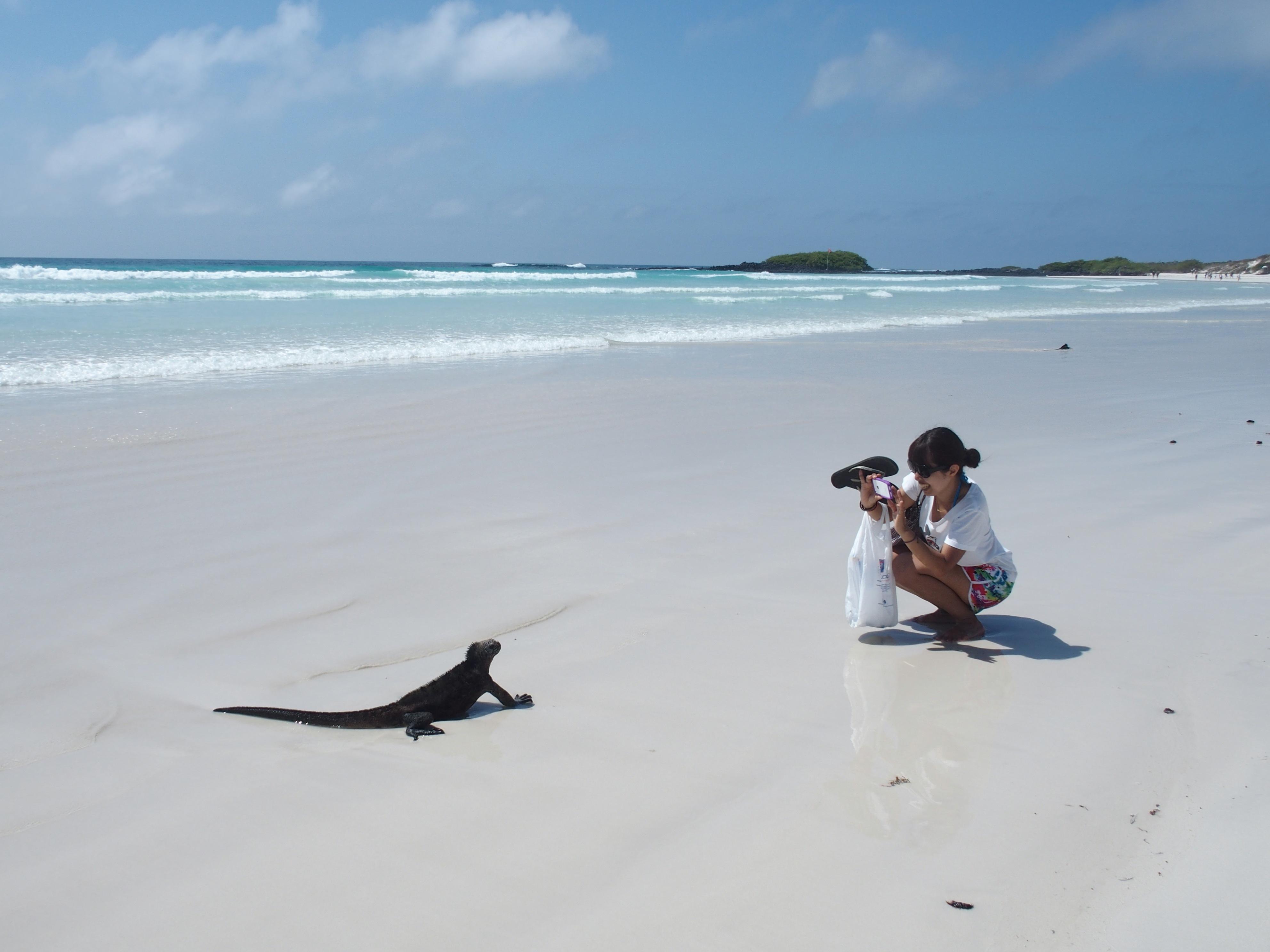 Séance photo sur la plage à Santa Cruz - Galapagos