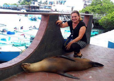 Rencontre avec un lion de mer en pleine sieste - Galapagos