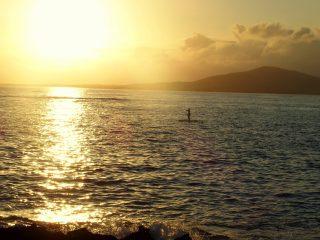 Dernière étape aux Galapagos sur l'île d'Isabela