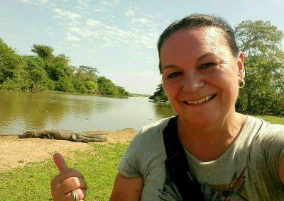 Caïman dans le Pantanal Brésil