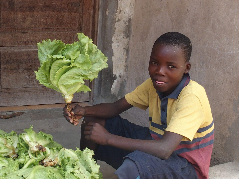 Petit vendeur de salade - Mozambique