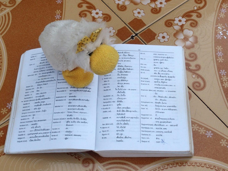 Couinn-Couinn apprend le laotien Luang Prabang Laos