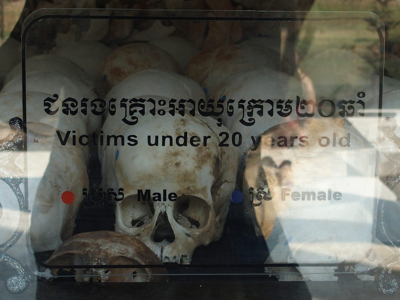 Crânes jeunes Musée génocide Phnom Penh Cambodge