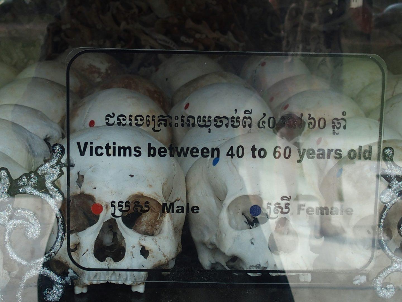 Crânes victimes 40-60 ans Musée génocide Phnom Penh Cambodge
